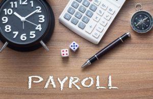 Pemakaian Software Payroll