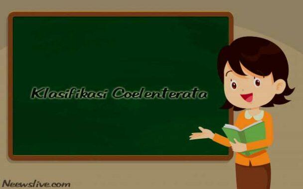 Klasifikasi Coelenterata